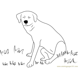 Dog Sitting on Grass Free Coloring Page for Kids