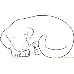 Dog Sleeping Wow Free Coloring Page for Kids