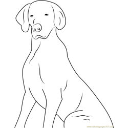 Dog Think Something Free Coloring Page for Kids