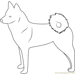Finnish Spitz Free Coloring Page for Kids