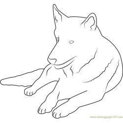 German Shepherd Free Coloring Page for Kids