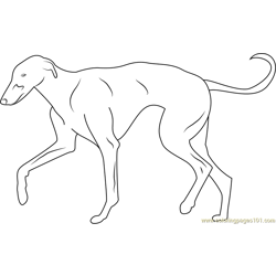 Greyhound Free Coloring Page for Kids