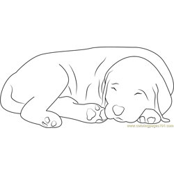 It's Bed Time Free Coloring Page for Kids