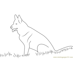 Labrador Dog Free Coloring Page for Kids