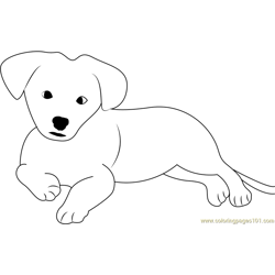 Nice Puppy Free Coloring Page for Kids