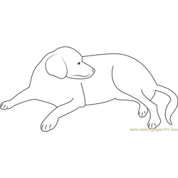 Pre Cut Black Dog Free Coloring Page for Kids