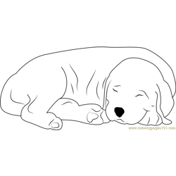 Sleeping Dog Free Coloring Page for Kids