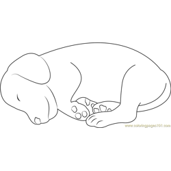 Small Dog Sleeping Free Coloring Page for Kids