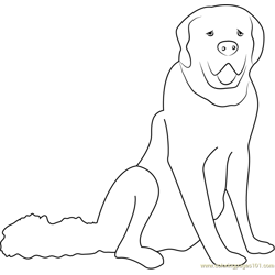 White Dog Free Coloring Page for Kids