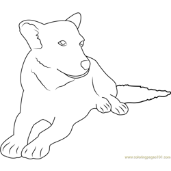 White Face Dog Free Coloring Page for Kids