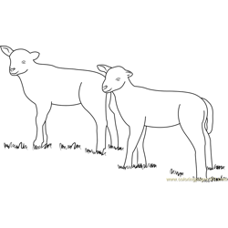 Lamb Look At coloring page