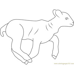 Lamb Running coloring page