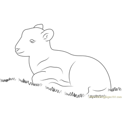 Lamb Sitting in Grass Free Coloring Page for Kids