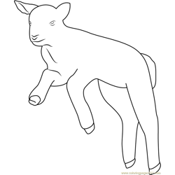 Spring Lamb Free Coloring Page for Kids
