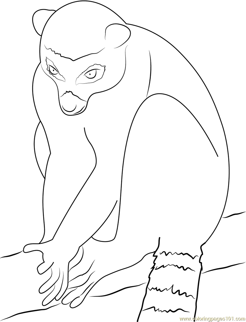 Lemur Look At Coloring Page Free Lemur Coloring Pages