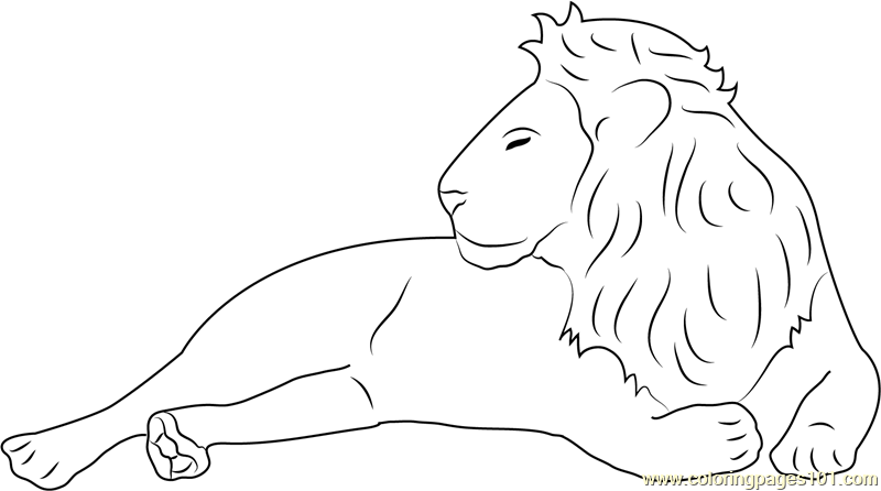 Lion Relaxing Coloring Page