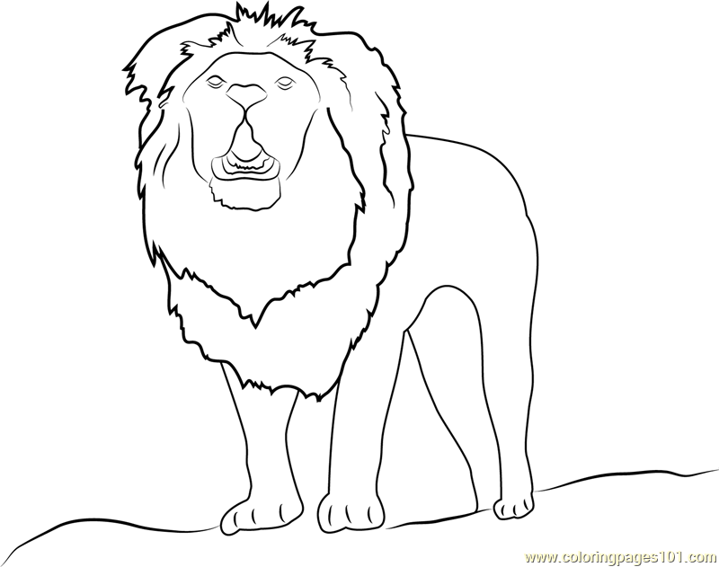 Lion Up Coloring Page