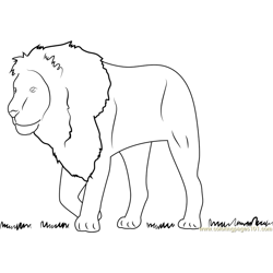 Lion See on Grass Free Coloring Page for Kids