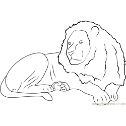 Lion Sitting Free Coloring Page for Kids