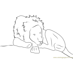 Lion Sleeping Free Coloring Page for Kids