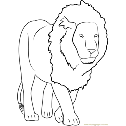 Lion Free Coloring Page for Kids