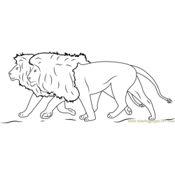 Lions Running Free Coloring Page for Kids