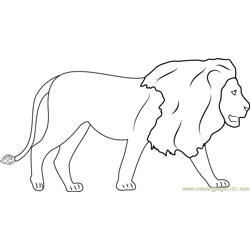 Lions Walking Free Coloring Page for Kids