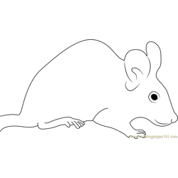 Mouse Sitting Free Coloring Page for Kids