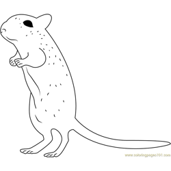 Mouse Up Free Coloring Page for Kids