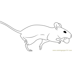 White Mouse Running Free Coloring Page for Kids
