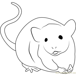 Wild Animals Mice Free Coloring Page for Kids