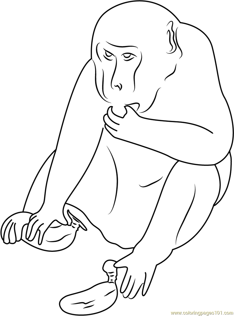 Cheeky Monkey Thief Coloring Page