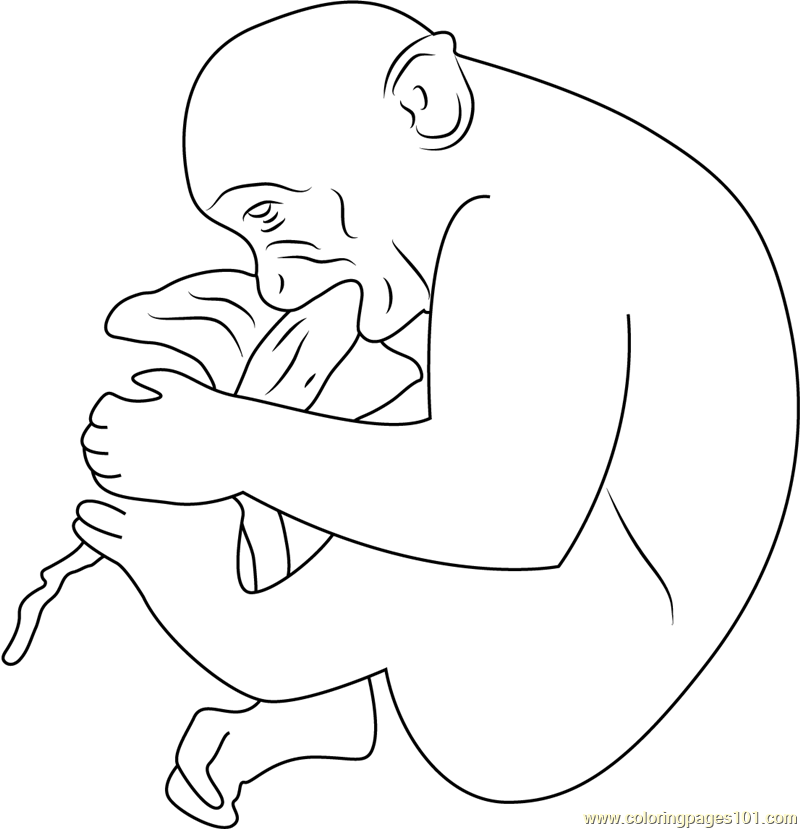 Hungry Monkey Jaipur Coloring Page