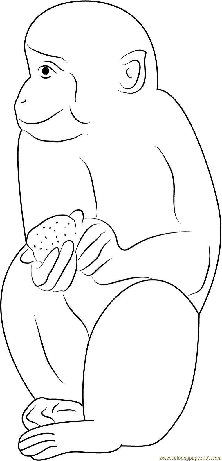 Indian Monkey Coloring Page Free