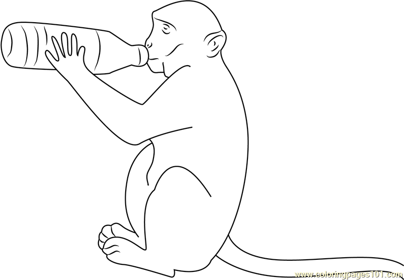Monkey Drink Milk Coloring Page