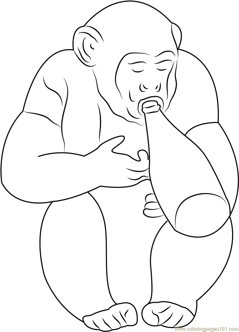 Monkey Drinks Beers Coloring Page