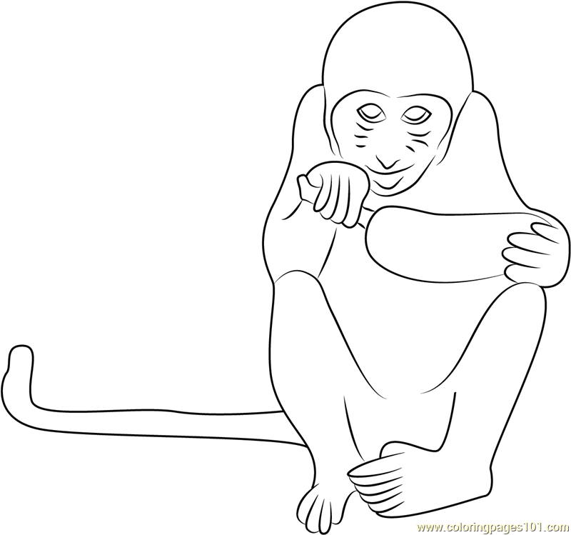 Monkey Eating Banana Coloring Page - Free Monkey Coloring Pages ...