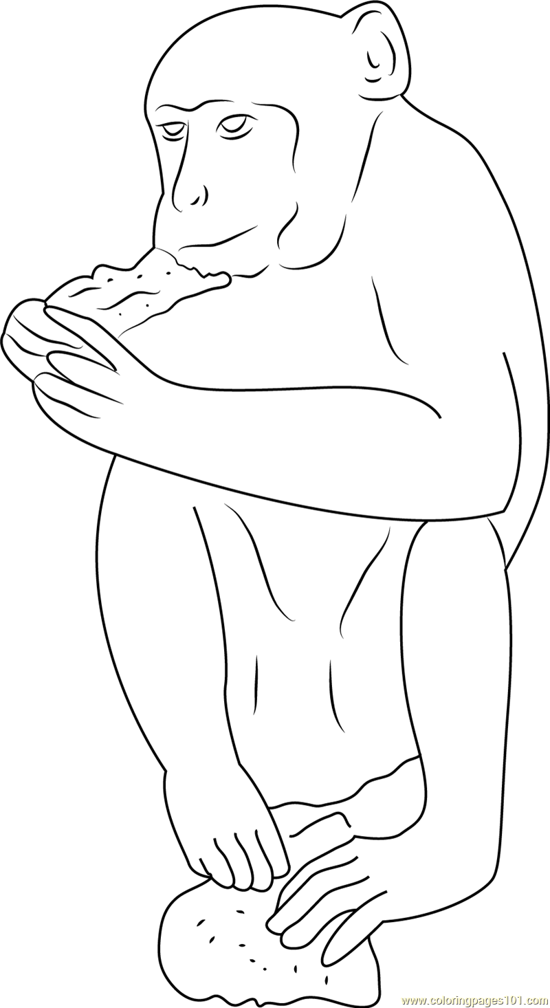 Monkey Eating Roti Coloring Page