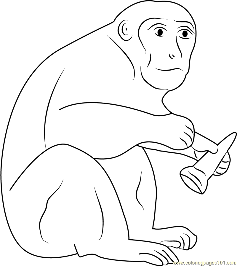 Monkey Having Ice Cream Coloring Page