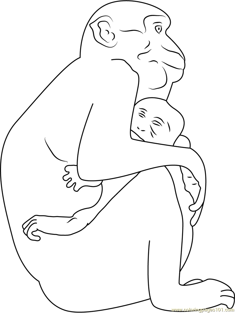 Monkey Hug His Son Coloring Page