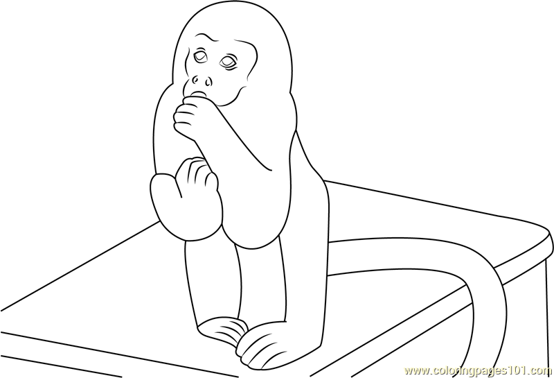 Monkey Sitting On Bench Coloring Page