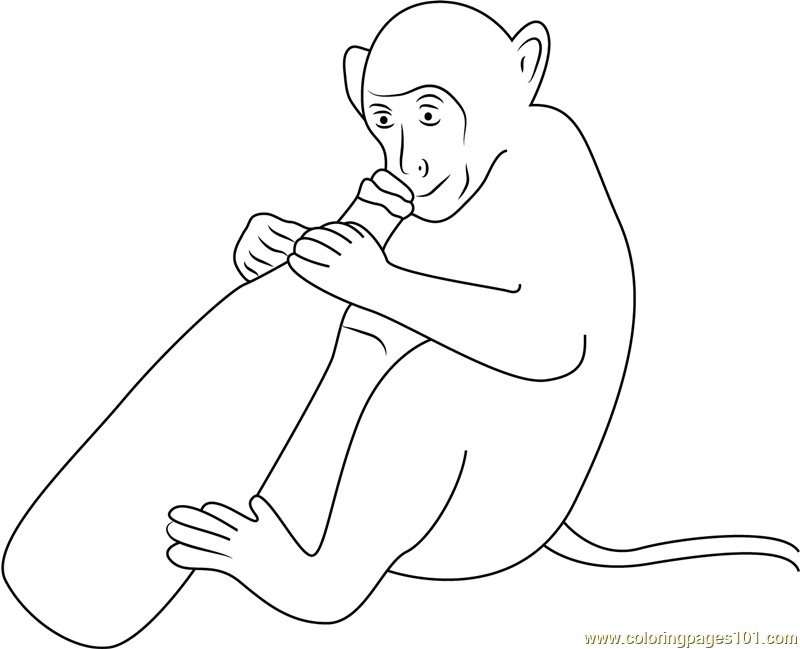 Monkey With Wine Bottle Coloring Page