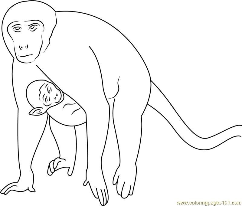 Monkey and Son Run Coloring Page