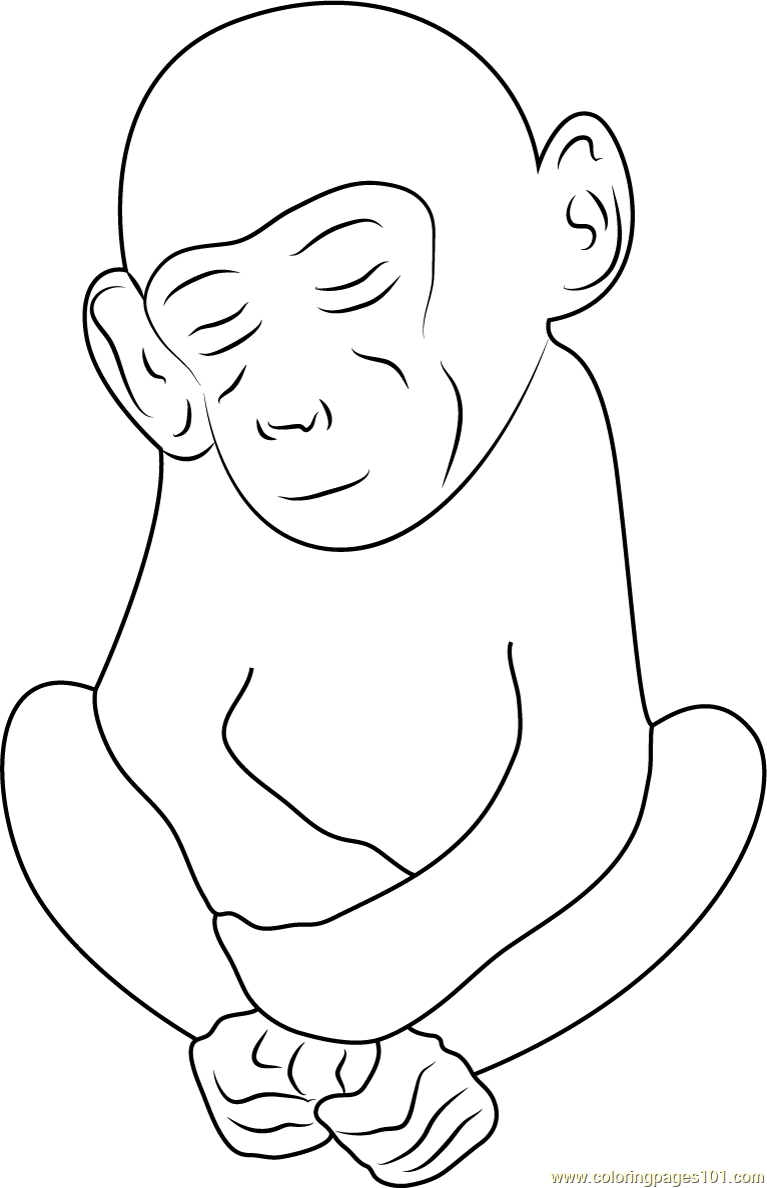Sleeping Monkey See Coloring Page