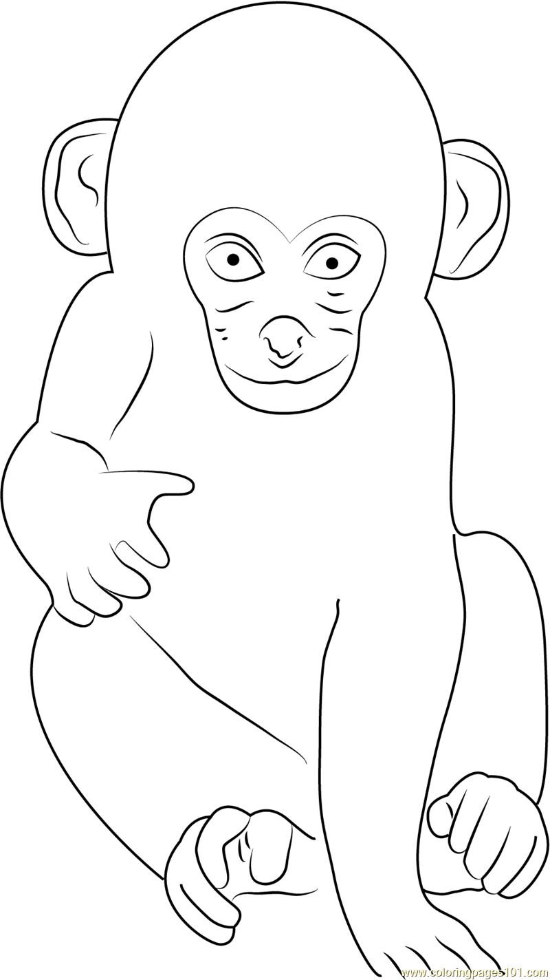 Free coloring pages of three monkeys