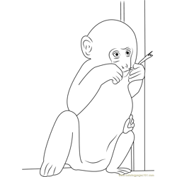Baby Monkey Eating Leaves Free Coloring Page for Kids