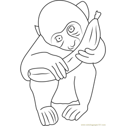 Baby Monkey Eating Free Coloring Page for Kids