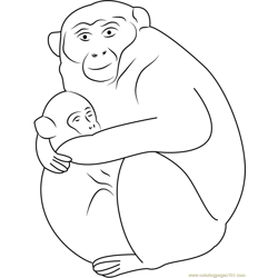 Baby Monkey Sleeping with Mother Free Coloring Page for Kids