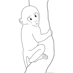Baby Monkey Up Free Coloring Page for Kids