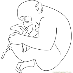 Hungry Monkey Jaipur Free Coloring Page for Kids